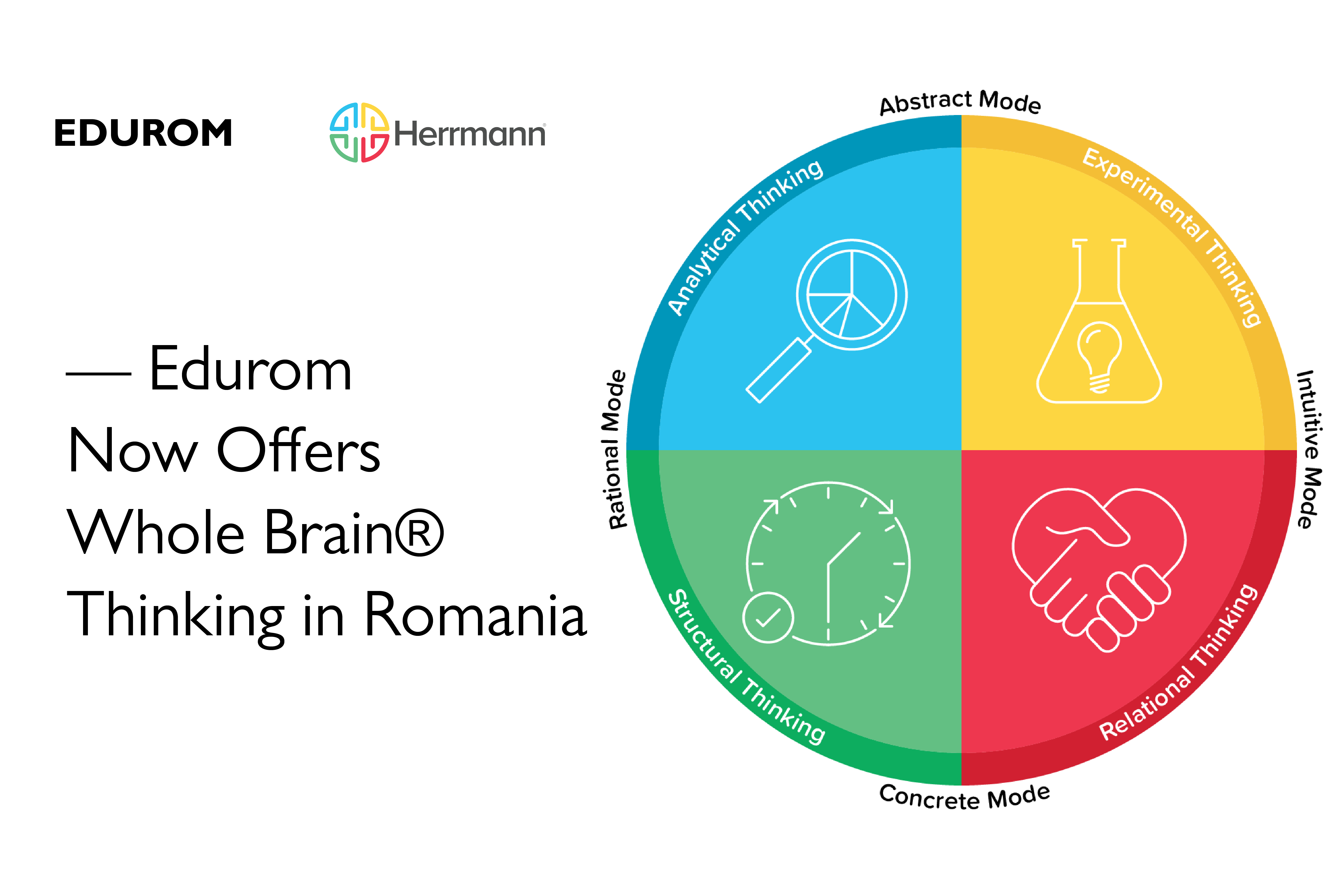 Edurom-Whole-Brain-Thinking-Romania